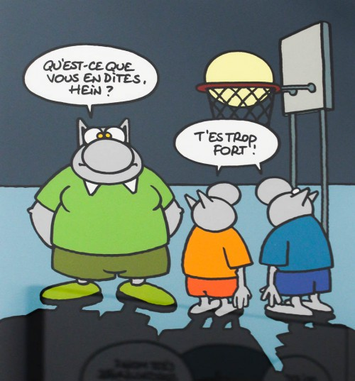 chat-geluck-7976