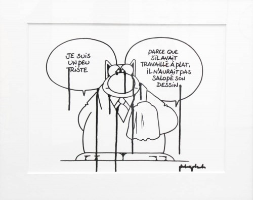chat-geluck-7983
