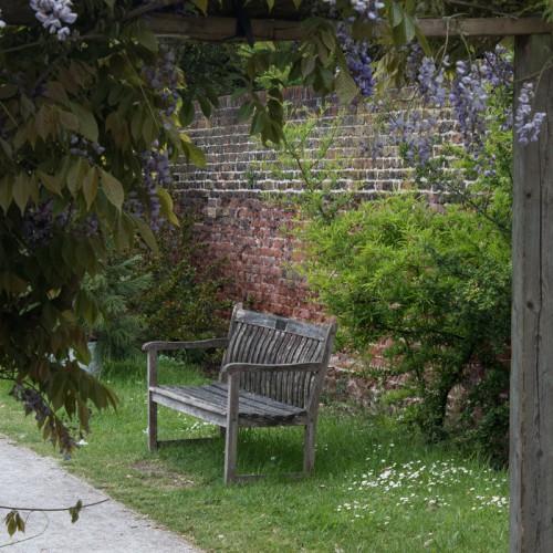 Dans les jardin de Fulham Palace