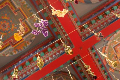 temple_mille_bouddhas-5175