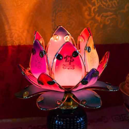 temple_mille_bouddhas-5182