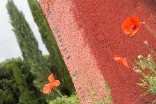 jardin_jocelyne_victor-9111