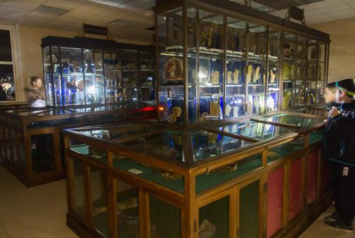 musee_sciences_medicales-9320