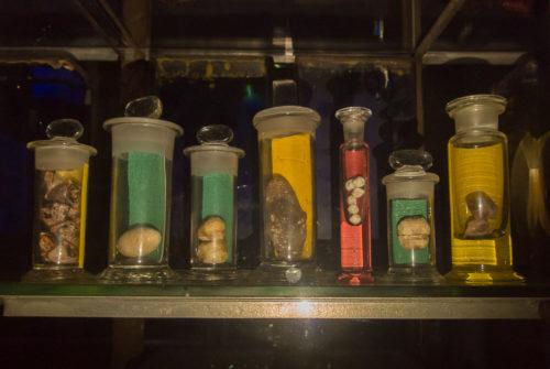musee_sciences_medicales-9337