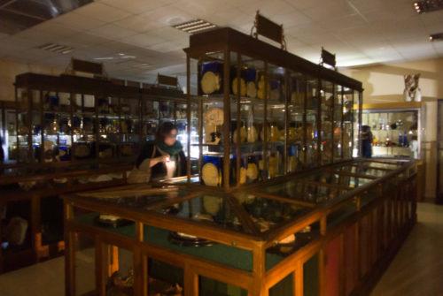 musee_sciences_medicales-9344